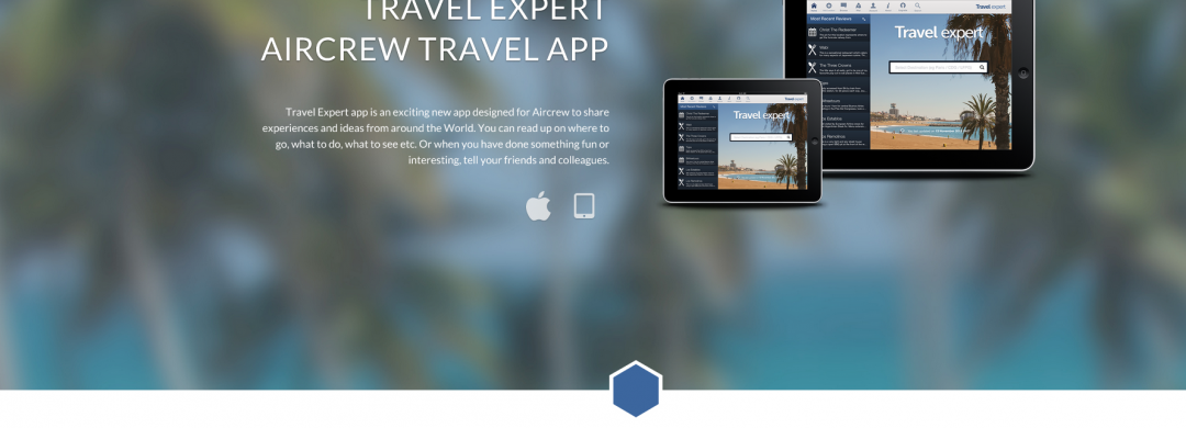 Travel Expert Website